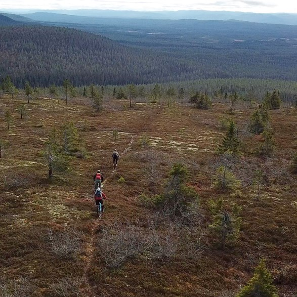 Gift Card, MTB Trail tour in Sälen, 3 h